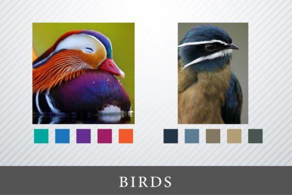 Kako izabrati najbolje boje za website?