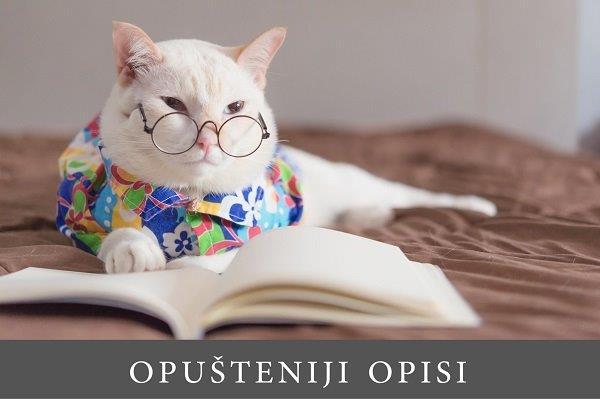 mačka obučena u šareno odelce sa naočarima na krevetu ispred koje je otvorena knjiga